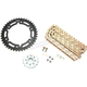 Gold WSS Warranty Chain and Sprocket Kit - CKG2152