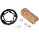 Gold WSS Warranty Chain and Sprocket Kit - CKG5130
