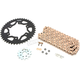 Gold WSS Warranty Chain and Sprocket Kit - CKG6385