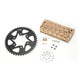 Gold WSS Warranty Chain and Sprocket Kit - CKG6387