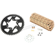 Gold WSS Warranty Chain and Sprocket Kit - CKG6400