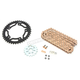 Gold WSS Warranty Chain and Sprocket Kit - CKG6415