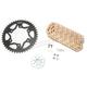 Gold HFRS Hyper Fast 520 Chain and Sprocket Kit - CKG6354