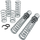 Stage 2 Pro Performance Spring System - E852090080222