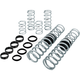 Stage 2 Pro Performance Spring System - E852090090222