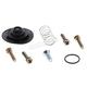 Diaphragm Repair Kit - 60-1302