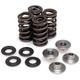 Titanium Racing Lightweight Intake/Exhaust Spring Kit (.415 in.) - 40-41400