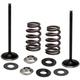 Titanium Intake Steel Valve Conversion Kit .435 in. - 96-96540