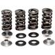 Titanium Lightweight Racing Intake/Exhaust Spring Kit (.445 in.) - 60-60170