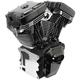 T124 Black Edition Longblock Engine - 310-0831A