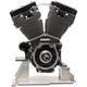 T111 Black Edition Longblock Engine - 310-0834A
