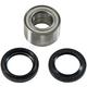 Wheel Bearing and Seal Kit - 1710-3049