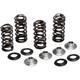 Stainless Steel Conversion Valve Spring Kit - 80-81400