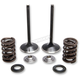 Stainless Steel Intake Only Valve/Spring Conversion Kit - 30-33200