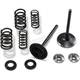 Stainless Steel Intake Only Valve/Spring Conversion Kit - 30-33250