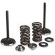 Stainless Steel Intake Valves/Spring Conversion Kit - 80-82350