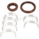 Main Bearing and Seal Kit - K242