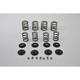 Valve Spring Kit - 13-9193