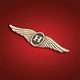 'H' Wing Emblem - 2-8