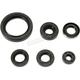 Oil Seal Set - 0935-1053