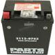 AGM Maintenance-Free Battery - 2113-0763