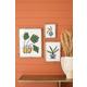 Kalalou Set of Three Colorful Plant Prints Under Glass