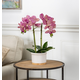 18-Inch Tall Real Touch Ultra-Realistic Pink Phalaenopsis Arrangement in Pot