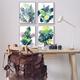Stupell Industries  Various Tropical Palm Fans Green Blue Plants, 16 x 20, Framed Wall Art
