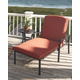 Tanglevale Chaise Lounge with Cushion