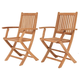 Yogya Folding Arm Chair (Set of 2)