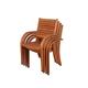 Palmira Eucalyptus Chairs (Set of 2)