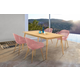 Nassau 5-Piece Outdoor Natural Wood Finish Table and Pink Peony Arm Chairs Dining Set