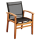 Guam Teak Dining Armchair with Black Textile Sling