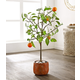 Safavieh Faux Orange Potted Tree