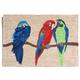 Home Accents Deckside 2' x 3' Aves Indoor/Outdoor Doormat