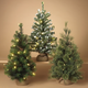 Holiday LED-Lighted Pine Trees with Burlap Base (Set of 3)