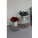 Wire Ball Planters with White Wash Pots (Set of 2)