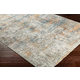Distressed Pattern Area Rug