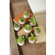 Small Succulents With Round Cement Pot (Set of 8)