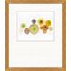Giclee Sorbet Dots Wall Art