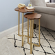 Adna Nesting Accent Tables (2pc)