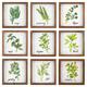 Flor Herb Wall Blocks (Set of 9)