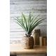 Home Accent Artificial Aloe Plant