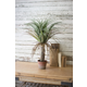 Home Accent Artificial Grass Plant