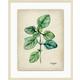 Giclee Kitchen Herb Wall Art