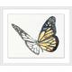 Giclee Monarch Study Wall Art