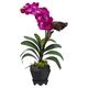 Home Accent Vanda with Black Hexagon Vase Silk Arrangement