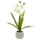 Home Accent Cymbidium Orchid Artificial Arrangement in Vase