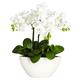Home Accent Phalaenopsis Silk Flower Arrangement
