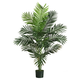 Home Accent 5' Paradise Palm Tree with 12 Lvs